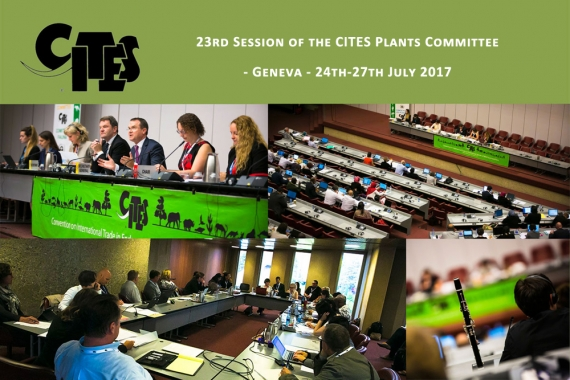 23rd Session of the CITES Plants Committee - Geneva - 24th-27th July 2017